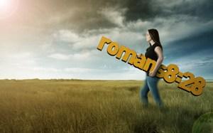 Romans 8_28a